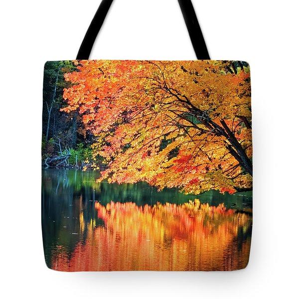 Autumn Magic Tote Bag