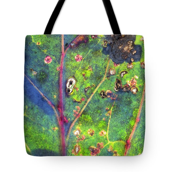 Autumn Magic Colors Tote Bag