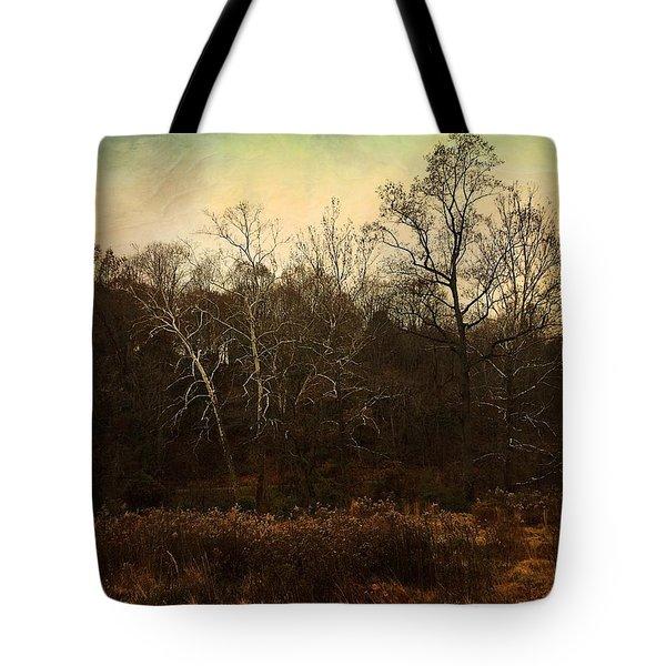 Autumn Majesty  Tote Bag