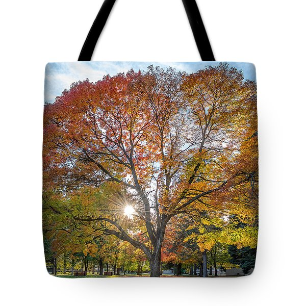Autumn Maple Tote Bag