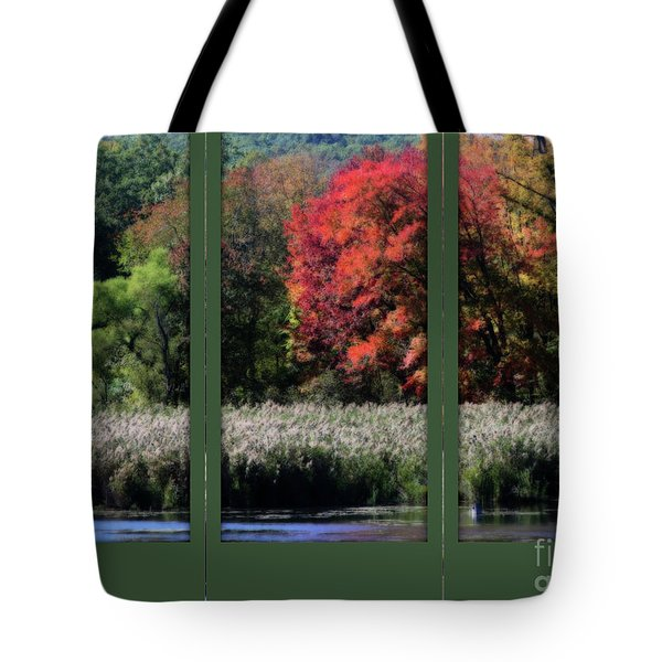 Tote Bag featuring the photograph Autumn Marsh Through A Window by Smilin Eyes  Treasures