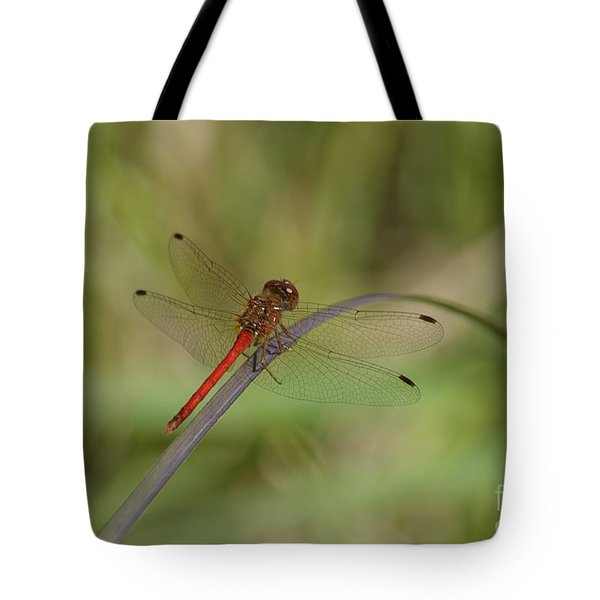 Autumn Meadowhawk Tote Bag