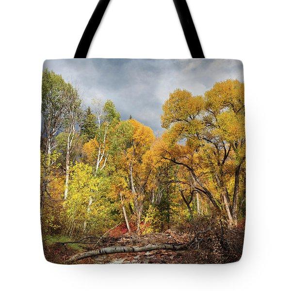 Autumn Medley Along The Creek Tote Bag