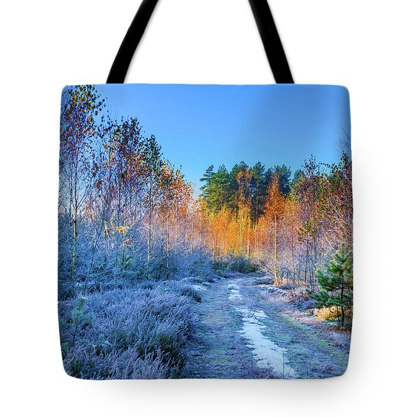 Tote Bag featuring the photograph Autumn Meets Winter by Dmytro Korol