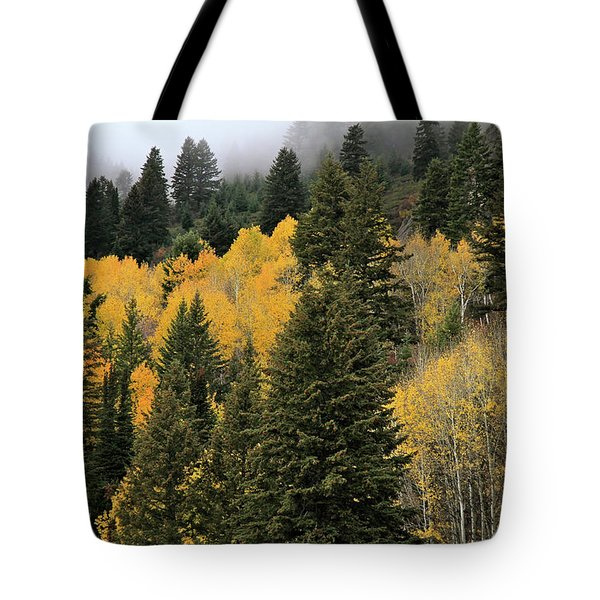 Autumn Mist, Owyhee Mountains Tote Bag