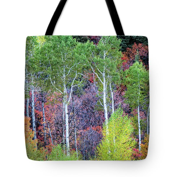 Tote Bag featuring the photograph Autumn Mix by Bryan Carter