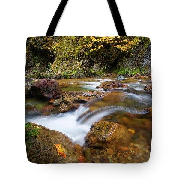 Tote Bag featuring the photograph Autumn Moment by Mike Dawson