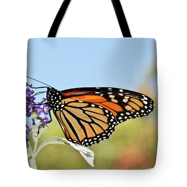 Tote Bag featuring the photograph Autumn Monarch Butterfly 2016 by Lara Ellis