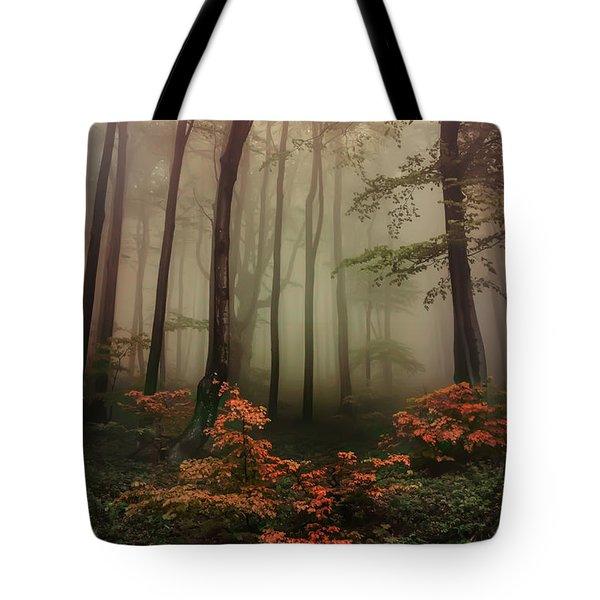 Autumn Mornin In Forgotten Forest Tote Bag