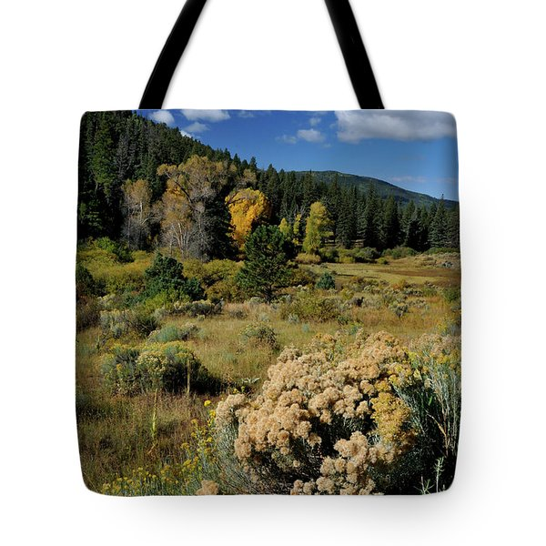 Tote Bag featuring the photograph Autumn Morning In The Canyon by Ron Cline