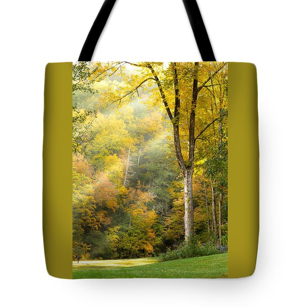Autumn Morning Rays Tote Bag