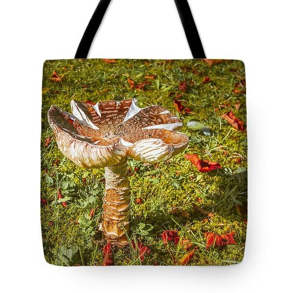 Autumn Mushroom Tote Bag