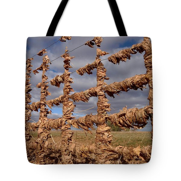 Tote Bag featuring the photograph Autumn Net by James Peterson