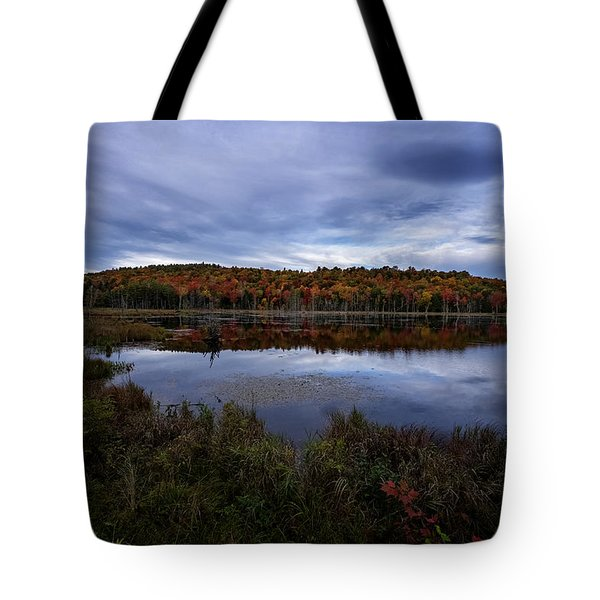 Autumn On North Pond Road Tote Bag