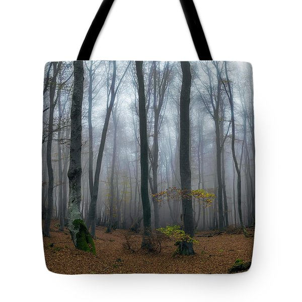 Autumn On The Balkans Tote Bag