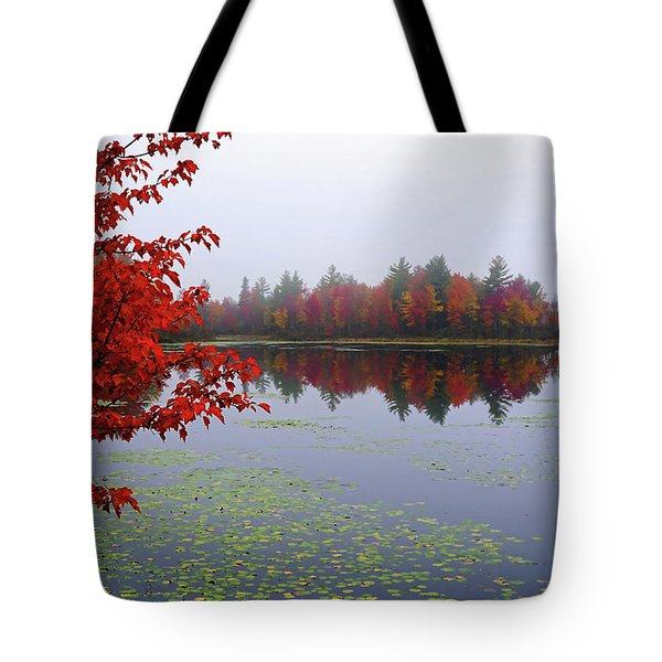 Tote Bag featuring the photograph Autumn On The Bellamy by Wayne Marshall Chase