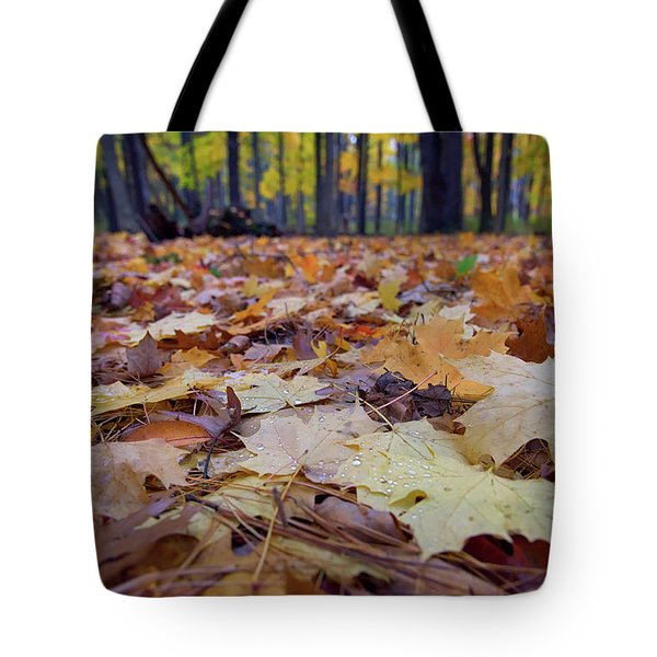 Autumn On The Forest Floor Tote Bag