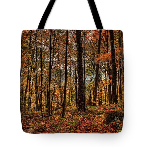 Autumn On The Ice Age Trail Tote Bag