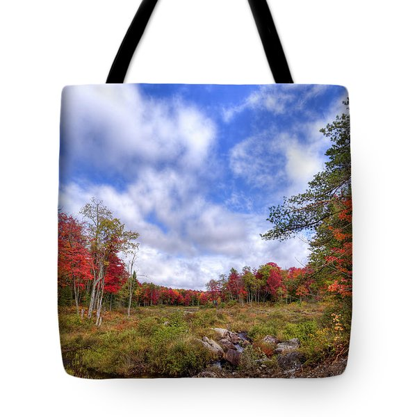 Tote Bag featuring the photograph Autumn On The Stream by David Patterson