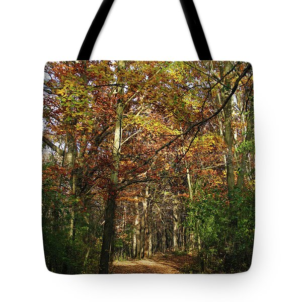 Autumn Path At St Croix Bluffs Tote Bag
