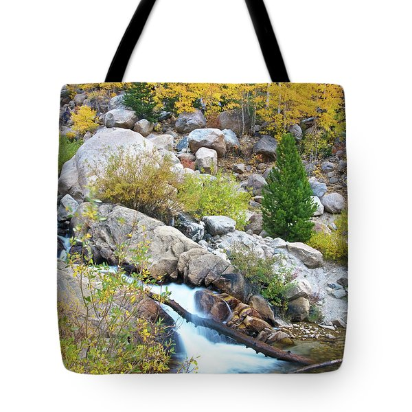 Tote Bag featuring the photograph Autumn Peace by Gary Lengyel