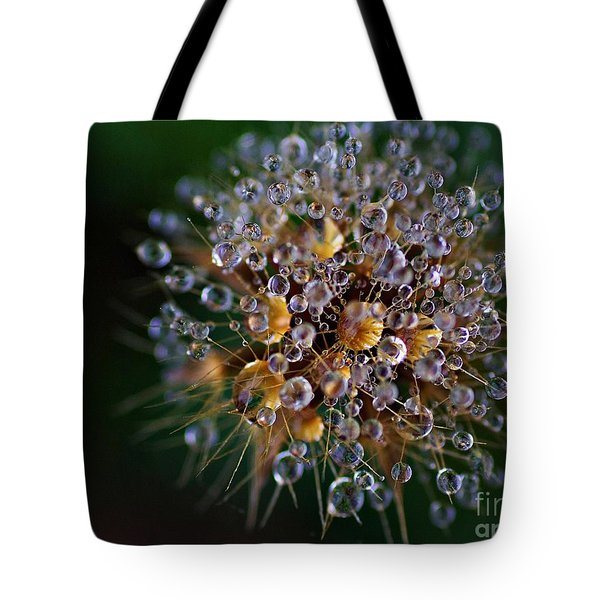 Tote Bag featuring the photograph Autumn Pearls by AmaS Art