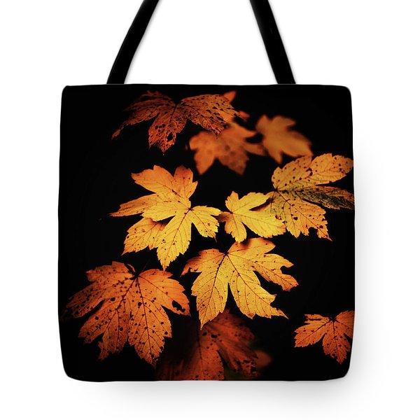 Autumn Photo Tote Bag