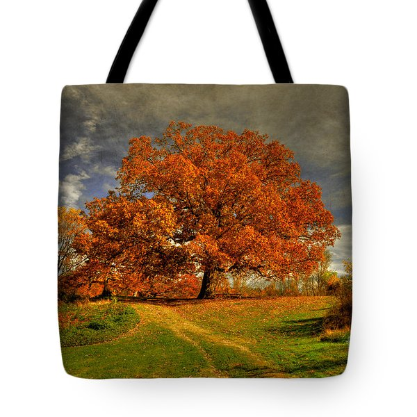 Autumn Picnic On The Hill Tote Bag
