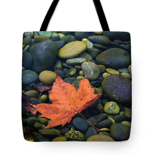 Autumn Pool 2017 Tote Bag