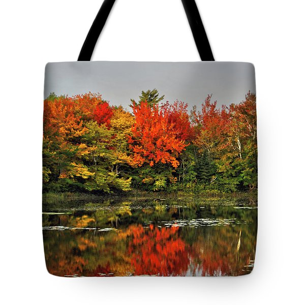 Autumn Portrait Tote Bag by Kathleen Sartoris