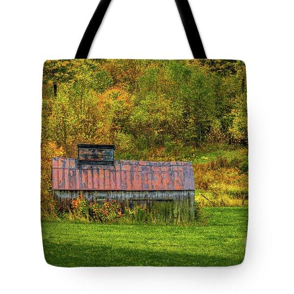 Autumn Rain 3 Tote Bag