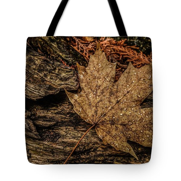 Autumn Rain Tote Bag