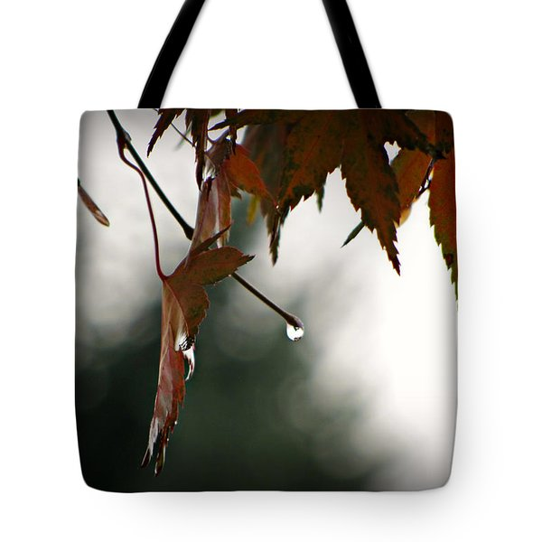 Autumn Raindrops Tote Bag by Katie Wing Vigil