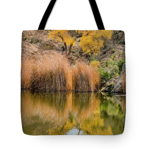 Tote Bag featuring the photograph Autumn Reflection At Boyce Thompson Arboretum by Teresa Wilson