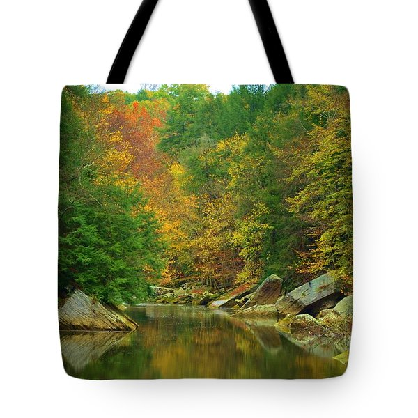 Autumn Reflections At Mcconnels Mill Tote Bag