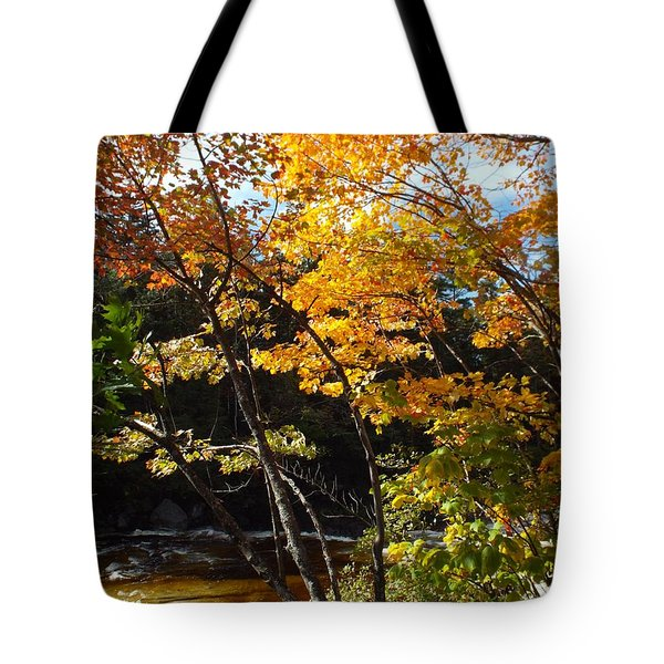 Autumn River Tote Bag