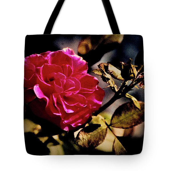 Tote Bag featuring the photograph Autumn Rose by Gerlinde Keating - Galleria GK Keating Associates Inc
