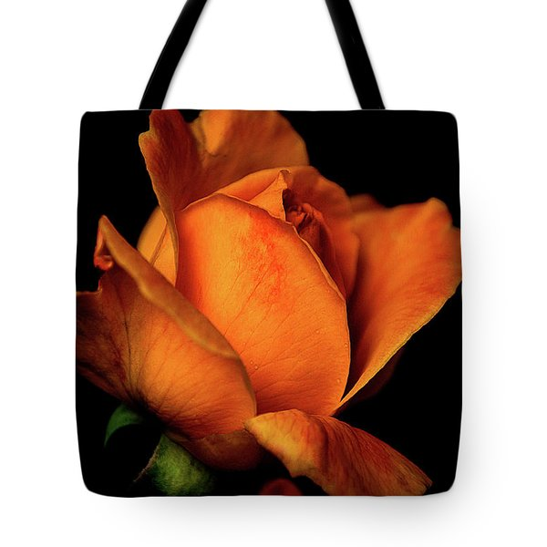 Tote Bag featuring the photograph Autumn Rose by Julie Palencia