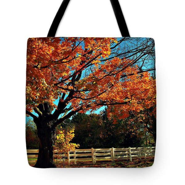 Tote Bag featuring the photograph Autumn Rows by Joan  Minchak
