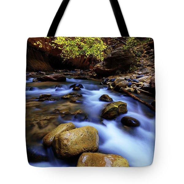 Autumn Run Tote Bag