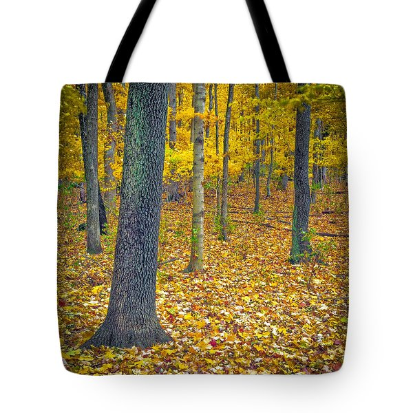 Tote Bag featuring the photograph Autumn by Samuel M Purvis III