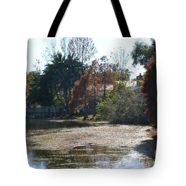 Tote Bag featuring the photograph Autumn Serenity by Carol  Bradley