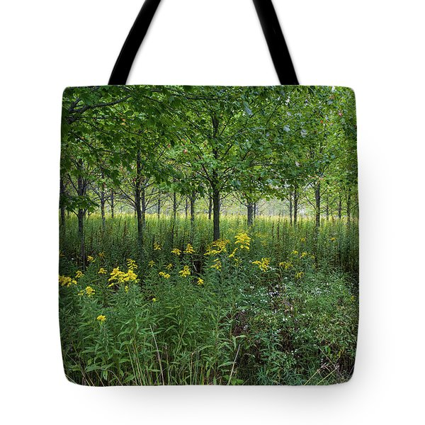 Tote Bag featuring the photograph Autumn Serenity by Lon Dittrick