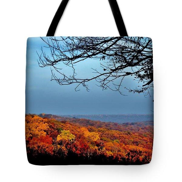 Autumn Shade Tote Bag