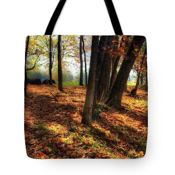 Tote Bag featuring the photograph Autumn Shadows In The Blue Ridge by Dan Carmichael