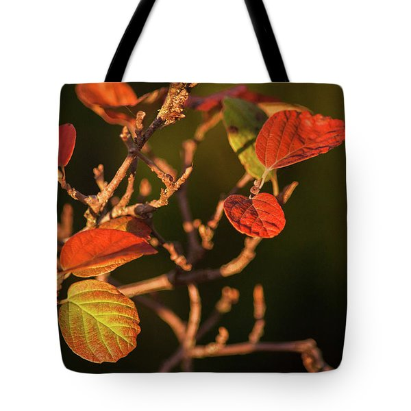 Autumn Shining Tote Bag