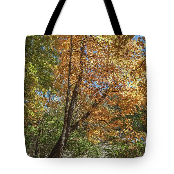 Tote Bag featuring the photograph Autumn Show On The River by Lon Dittrick