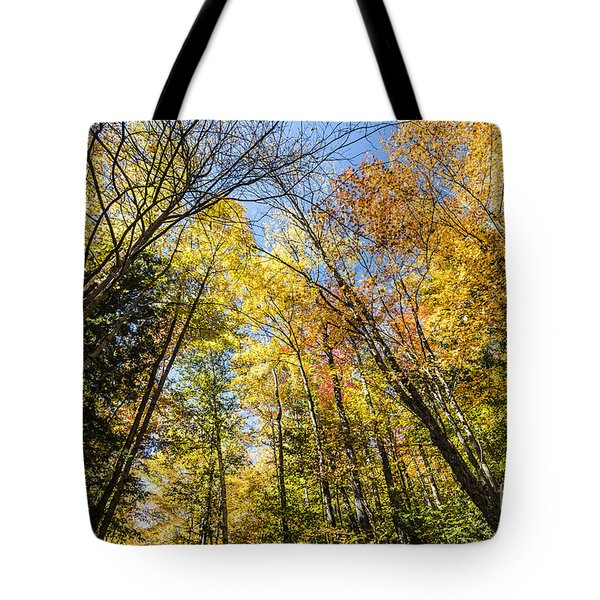 Tote Bag featuring the photograph Autumn Skies by Anthony Baatz