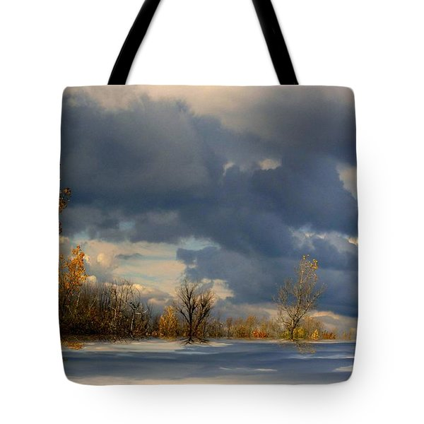 Autumn Skies  Tote Bag by Elfriede Fulda