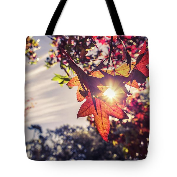 Tote Bag featuring the photograph Autumn Sky And Colorful Leaves In Fall Season With Sun Shine On  by Jingjits Photography